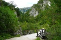Dolina_Draga